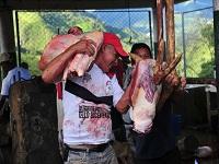 Gobernación dotará 17 mataderos que estaban a punto de cerrar