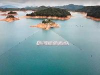 El país estrena su primer panel solar flotante