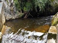 Cundinamarca promueve la protección del recurso hídrico