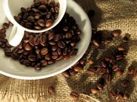 En Soacha se inaugura complejo logístico e industrial de café