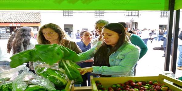 'Cambio verde' en Soacha ha entregado 400 libras de alimentos