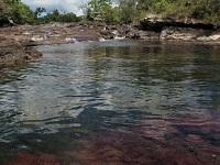 Caño Cristales de nuevo estará habilitado para ecoturismo