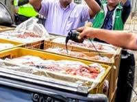 Incautan carne en mal estado al parecer proveniente de Soacha