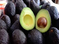 Colombia exportará aguacate hass a Argentina