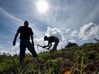 Fallos de restitución de tierras benefician a cerca de 500 víctimas del conflicto armado en Cundinamarca