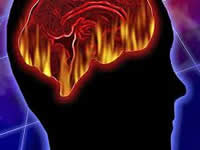 El calor ralentiza el cerebro más de un 10%