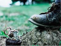 24 municipios de Cundinamarca  libres de minas antipersona