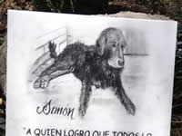 Simón, el perro que dio nombre a una plaza de la UDEC Soacha