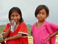 Famosos se suman a la iniciativa que busca llevar más de 1 millón de alimentos a los niños de La Guajira