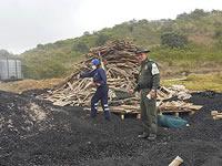 En Soacha capturan 12 personas por delitos ambientales