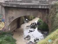 Tehati invita a conocer y cuidar el río Soacha