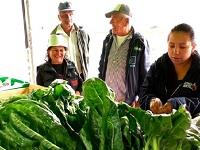 En Sibaté  habrá intercambio de residuos sólidos por alimentos saludables