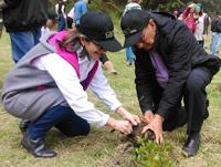 Con siembra de árboles en Soacha, CAEM celebra 35 años de historia