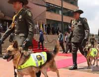 Cundinamarca es uno de los tres territorios más seguros del país