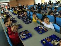 Escuelas rurales públicas de Bogotá ya cuentan con lineamientos educativos