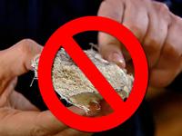 Estudio académico confirma impacto del asbesto en población sibateña