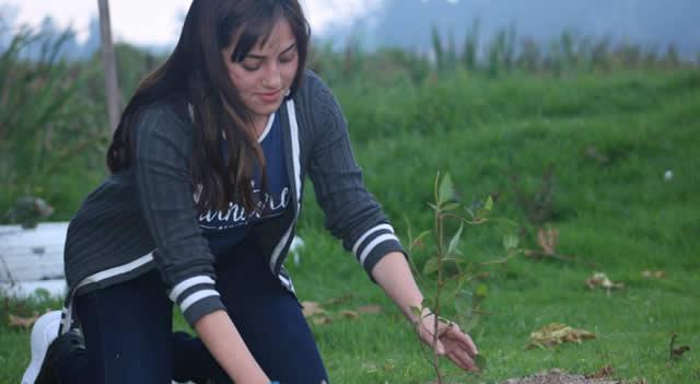 En Soacha se han sembrado  más de 70.000 árboles