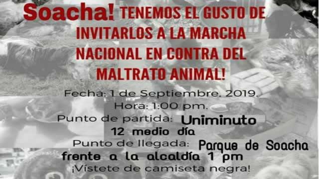 Soacha se une a la marcha nacional contra el maltrato animal