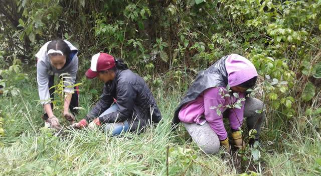 Cundinamarca promueve la protección del medio ambiente a través del proyecto NAMA Industria