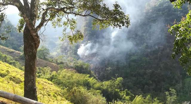 Controlado incendio forestal en cerros orientales
