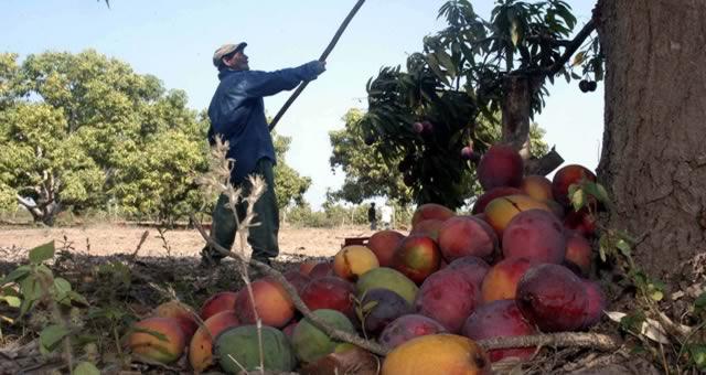 Abastecimiento de alimentos recibe respaldo de la Esap