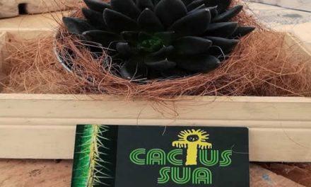 """""""Cactus Sua"""" emprendimiento orgánico y natural en Soacha"""