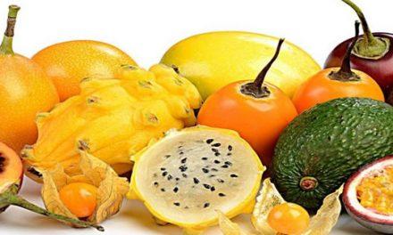 Piña, gulupa, uchuva, mango y granadilla fueron las frutas más exportadas durante 2019