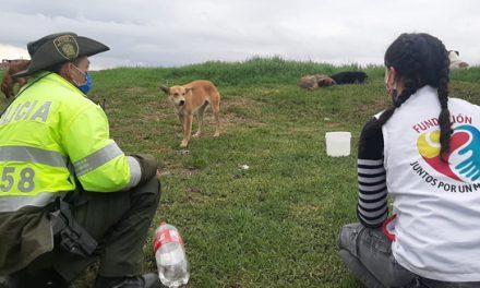 Policía de Soacha cuida de caninos abandonados