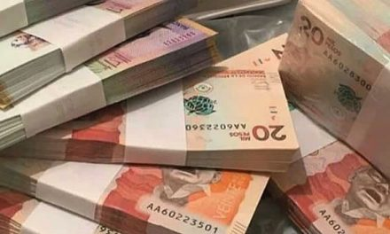 Aumentan exportaciones de fajas colombianas