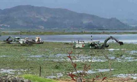 Cerca de 10  millones de sedimentos se extraerán de la laguna de Fúquene