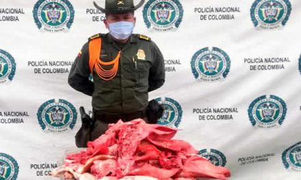 Incautan carne en descomposición en Altos de la Florida