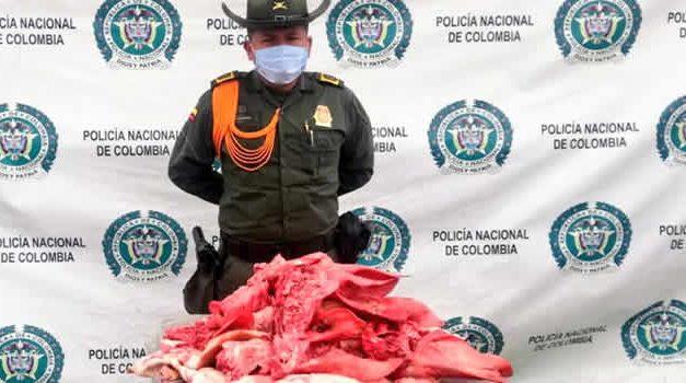 Incautan carne en descomposición en Altos de la Florida