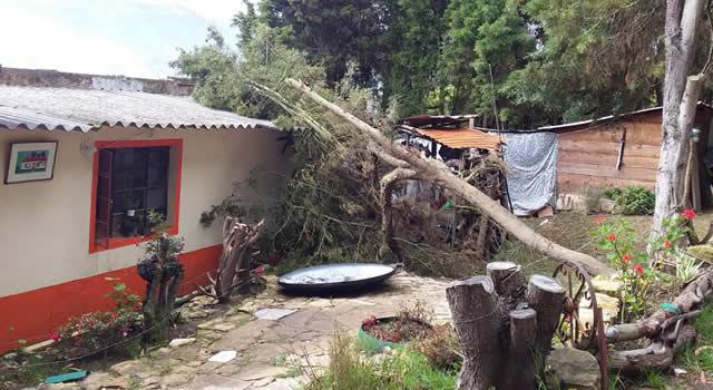 Vendaval tumbó árboles y desprendió tejas en Sibaté, Cundinamarca