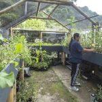 6.131 productores agrícolas reciben apoyo para transporte de sus productos