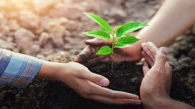 Clases virtuales sobre medio ambiente para los ciudadanos