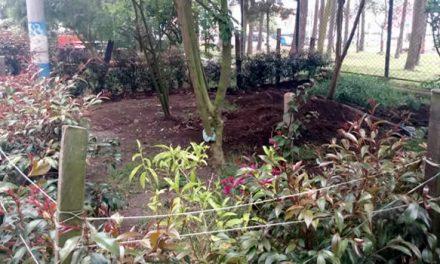 En medio de la pandemia se embellecen zonas comunes en Soacha