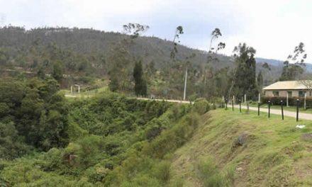 Se retoman trabajos para proteger humedal El Charquito en Soacha