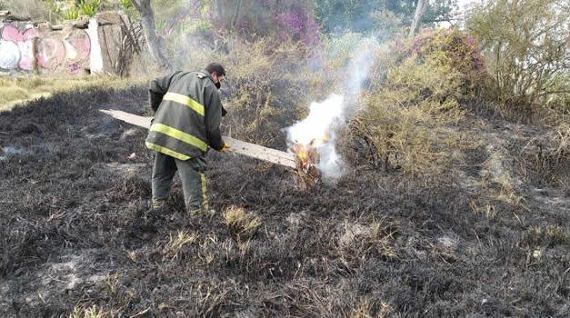 """Avanza en la creación de una política integral para la """"Prevención de Incendios Forestales"""""""