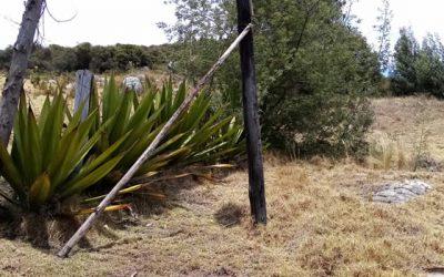 Poste de energía amenaza vida e integridad de  residentes de un sector de Soacha