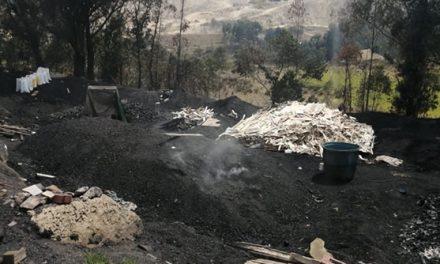 Incautados más de 50 bultos de carbón vegetal en zona rural de Soacha
