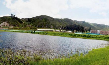 Nadie detiene vertimiento de aguas contaminadas al humedal El Vínculo Maiporé en Soacha