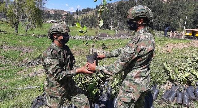 Ejército Nacional apoya la siembra en Cucunubá