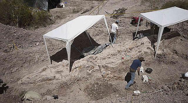 """Cundinamarca tendrían suelos """"marcianos""""  para astrobiología"""
