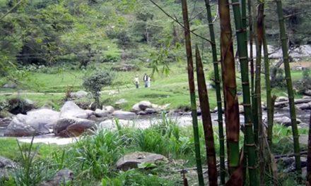 Delincuentes se apoderaron del camino al río Cuja en Fusagasugá, Cundinamarca