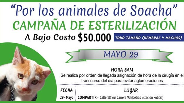 Campaña privada de esterilización de mascotas en Soacha