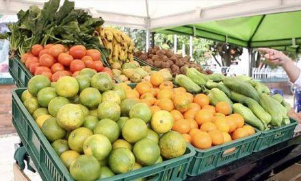 Abastecimiento de alimentos en Corabastos comienza a normalizarse