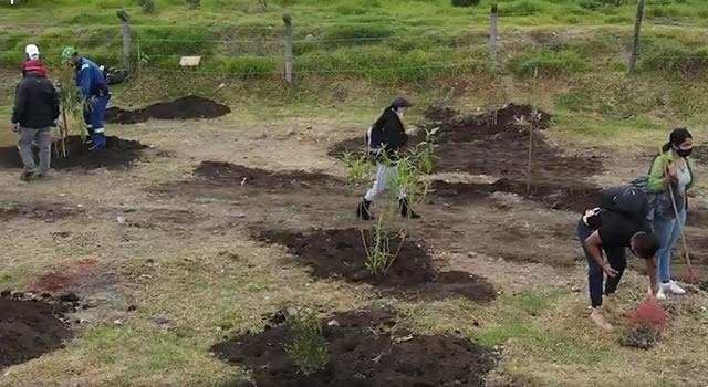Siembran plantas en el humedal Tierra Blanca de Soacha